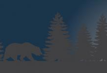 grizzly bear  e