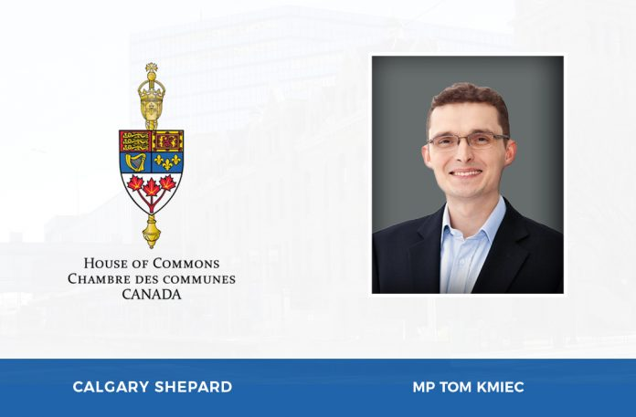 Calgary Shepard  e