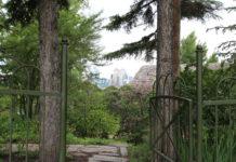 Reader rock garden and cafe Calgary